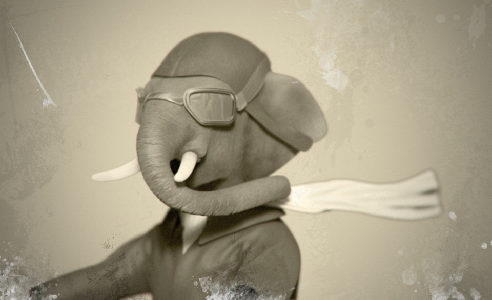 elephant_pilot_small